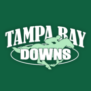 Tampa Bay Downs Apk by americaneagle.com
