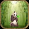 Bashful Panda Escape icon